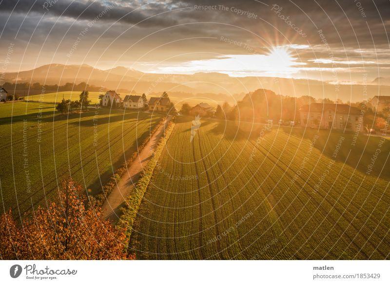 Herbstlicht Landschaft Pflanze Himmel Wolken Horizont Wetter Schönes Wetter Baum Feld Felsen Berge u. Gebirge Dorf leuchten braun gelb gold grau grün orange