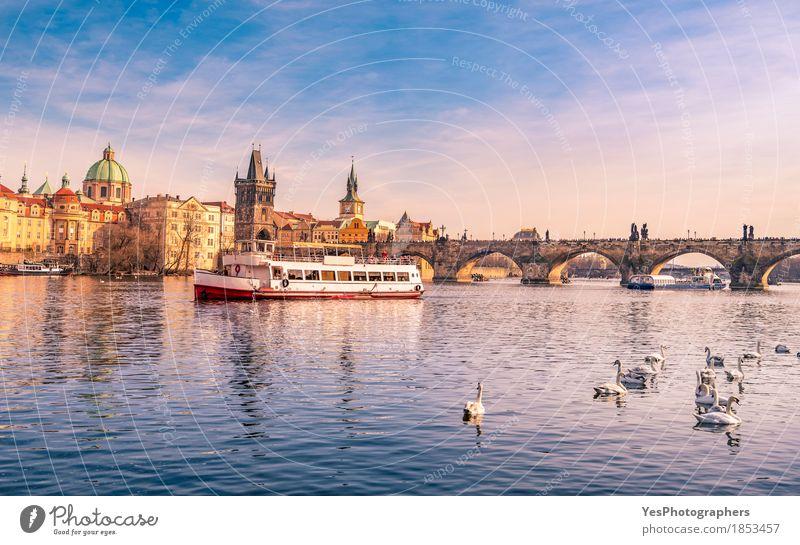 Prag-Stadtbild mit Vltava und Charles Bridge Freude Ferien & Urlaub & Reisen Tourismus Ausflug Sightseeing Architektur Natur Fluss Skyline Brücke Gebäude