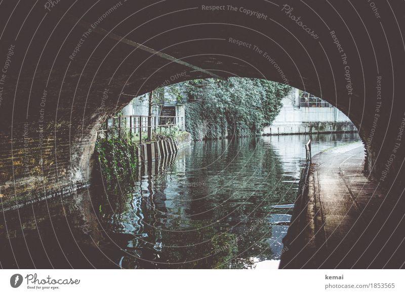 Am Kanal Wasser Grünpflanze Fluss Stadt Stadtzentrum Brücke Tunnel Fassade Geländer authentisch dunkel glänzend Einsamkeit Wasseroberfläche Wasserstraße Kurve