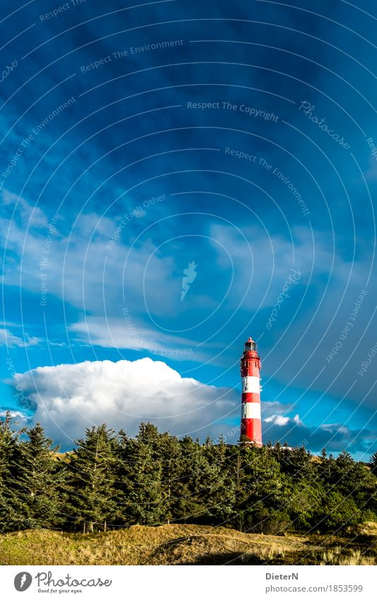 Kontrast Natur Landschaft Himmel Wolken Herbst Wetter Schönes Wetter Baum Wiese Nordsee blau grün rot Leuchtturm Amrum Nordfriesische Inseln Farbfoto mehrfarbig