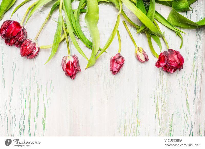 Schöne rote Tulpen auf hellem Hintergrund Stil Design Dekoration & Verzierung Feste & Feiern Valentinstag Ostern Natur Pflanze Frühling Blume Blatt Blüte