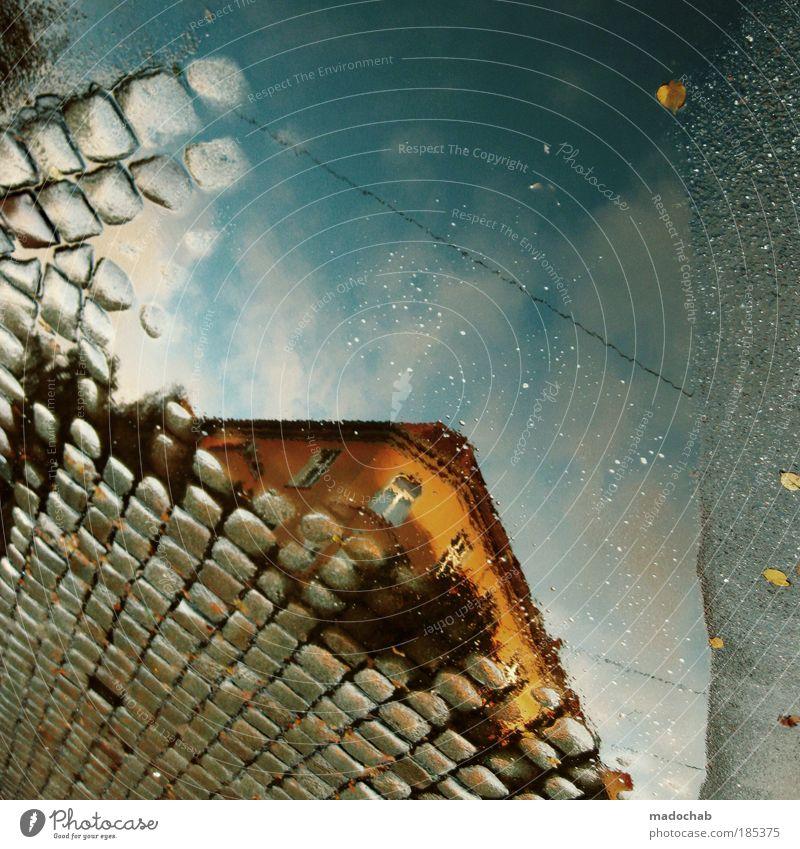 Tendenziell sinkend oder steigend? Reflexion & Spiegelung Stadt Blatt Haus Straße Herbst Unterwasseraufnahme träumen Gebäude Regen Froschperspektive Architektur Experiment Umwelt nass Mensch
