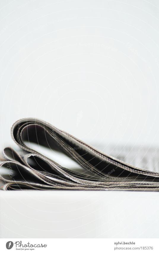 ausgelesen 2 Lifestyle Freizeit & Hobby Wohnung Bildung Wissenschaften Printmedien Zeitung Zeitschrift Denken entdecken Erholung nachhaltig klug grau schwarz