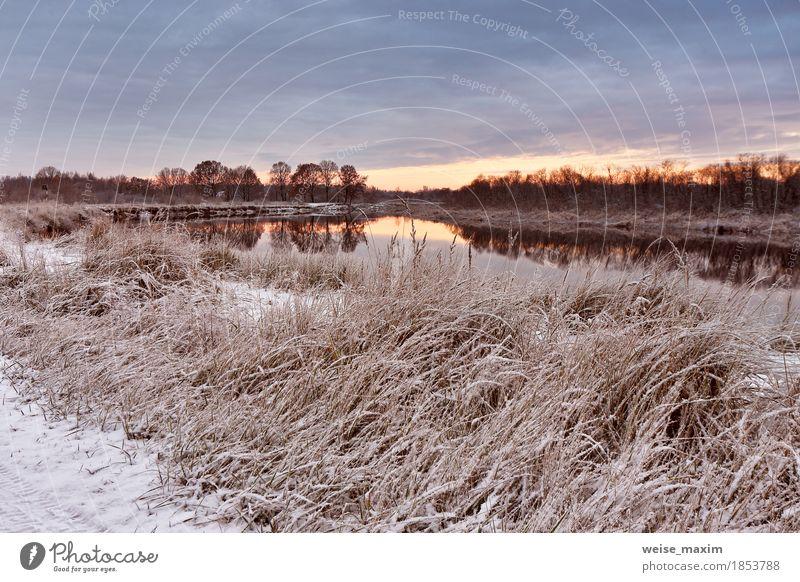 Bewölkte Herbstdämmerung. Erster Schnee im Herbst Fluss Himmel Natur Ferien & Urlaub & Reisen Pflanze weiß Baum Landschaft Wolken Winter Wald Umwelt gelb Wiese