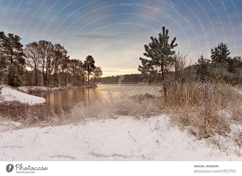 Kalter schneebedeckter Morgen auf dem See. Spätherbst Himmel Natur Ferien & Urlaub & Reisen Pflanze weiß Baum Landschaft Wolken Winter Wald Umwelt gelb Herbst