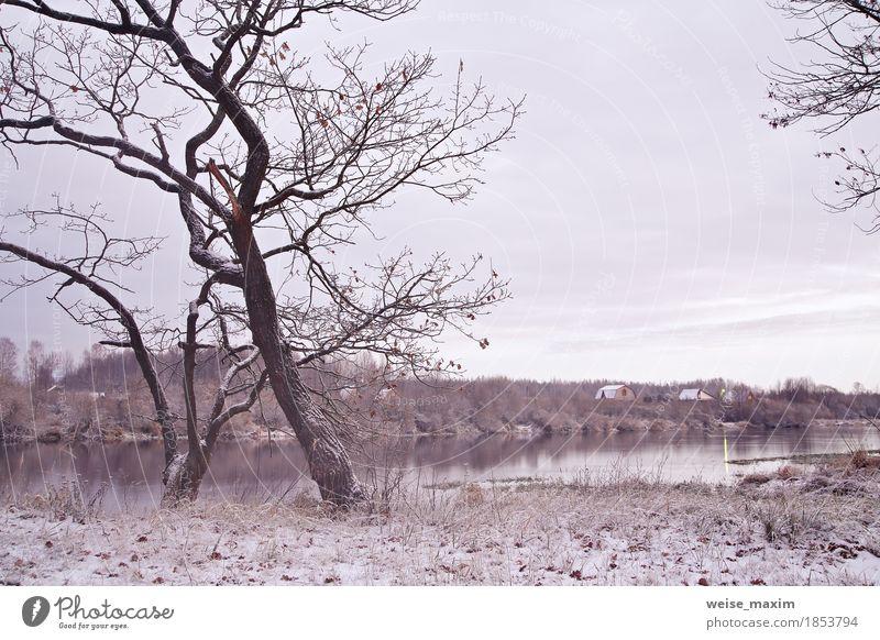Erster Schnee am Flussufer. Herbstmorgen Landschaft Natur Ferien & Urlaub & Reisen Pflanze weiß Baum Haus Ferne Winter Wald Umwelt gelb natürlich Gras