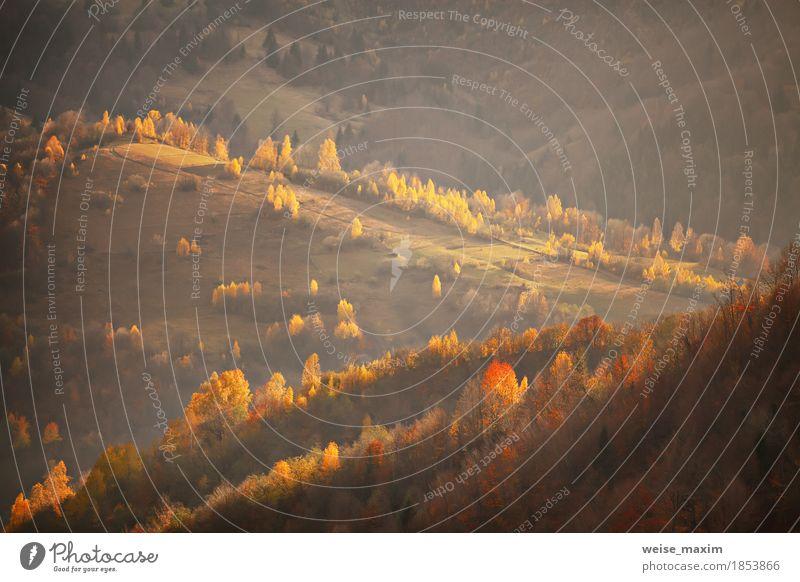 Fall in Berghügeln. Alpine Oktober-Szene Ferien & Urlaub & Reisen Tourismus Ausflug Ferne Berge u. Gebirge Haus Umwelt Natur Landschaft Pflanze Sonnenaufgang