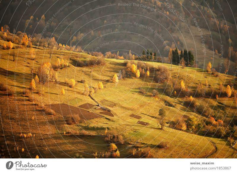 Fall in Bergdorf. Alpine Oktober-Szene. Natur Ferien & Urlaub & Reisen grün Baum Landschaft rot Blatt Haus Ferne Wald Berge u. Gebirge Umwelt gelb Wege & Pfade