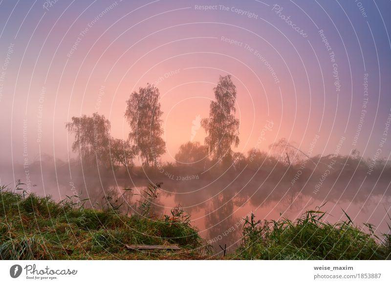 Nebeliger Morgen des Herbstes. Bunte Dämmerung auf dem nebelhaften ruhigen Fluss Ferien & Urlaub & Reisen Tourismus Freiheit Umwelt Natur Landschaft Himmel Baum