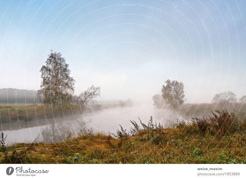 Nebeliger Morgen des Herbstes. Morgendämmerung auf dem nebligen ruhigen Fluss Himmel Natur Ferien & Urlaub & Reisen blau grün Baum Landschaft gelb Wiese