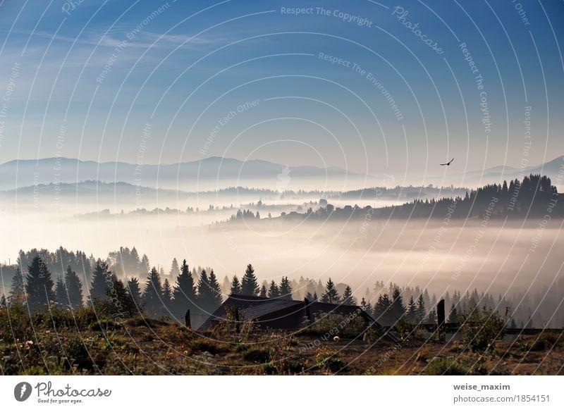 Vogel fliegt über Hügel und Dorf. Nebeliger Morgen in Bergen Himmel Natur Ferien & Urlaub & Reisen blau weiß Baum Landschaft Wolken Haus Wald Berge u. Gebirge