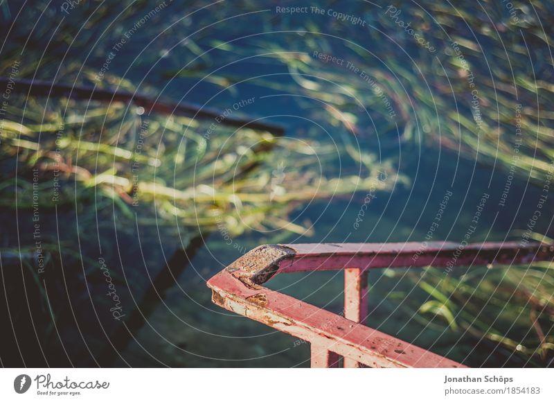 Geländer in den See Herbst Tapferkeit Strand Schwimmen & Baden Seeufer Algen grün rot Sommer Sonnenstrahlen nass Mut Badesee Außenaufnahme entdecken Ekel