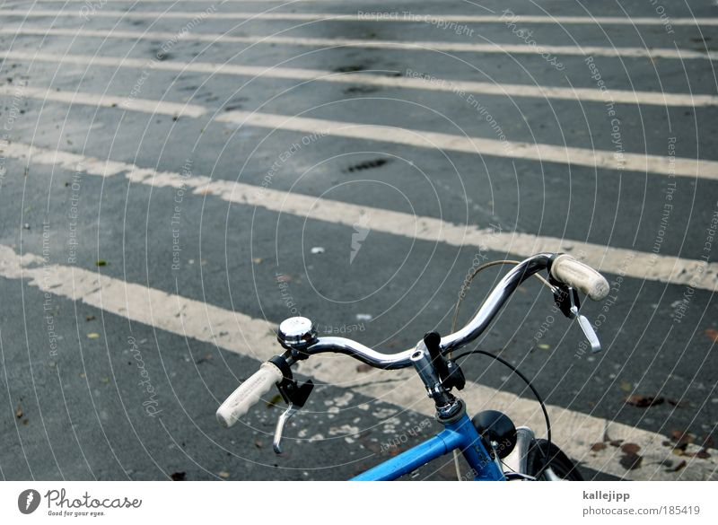 zebra auf streife Straße Fahrrad Straßenverkehr Verkehr Lifestyle Freizeit & Hobby Verkehrswege Nostalgie Personenverkehr Fahrradklingel Verkehrsmittel Bremse