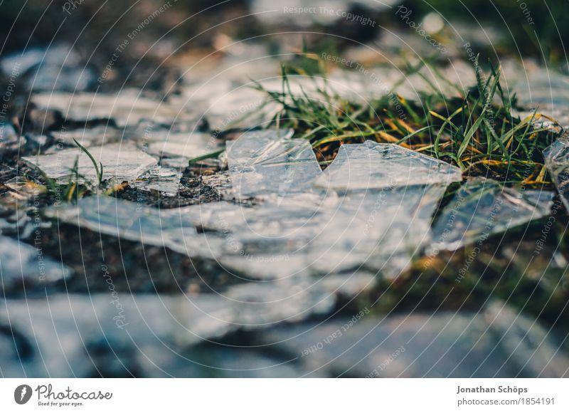 Väterchen Frost XII Umwelt Natur Herbst Winter Pflanze Gras Tod Schmerz Enttäuschung Erschöpfung schuldig Scham Reue Wut Frustration Rache Aggression Gewalt