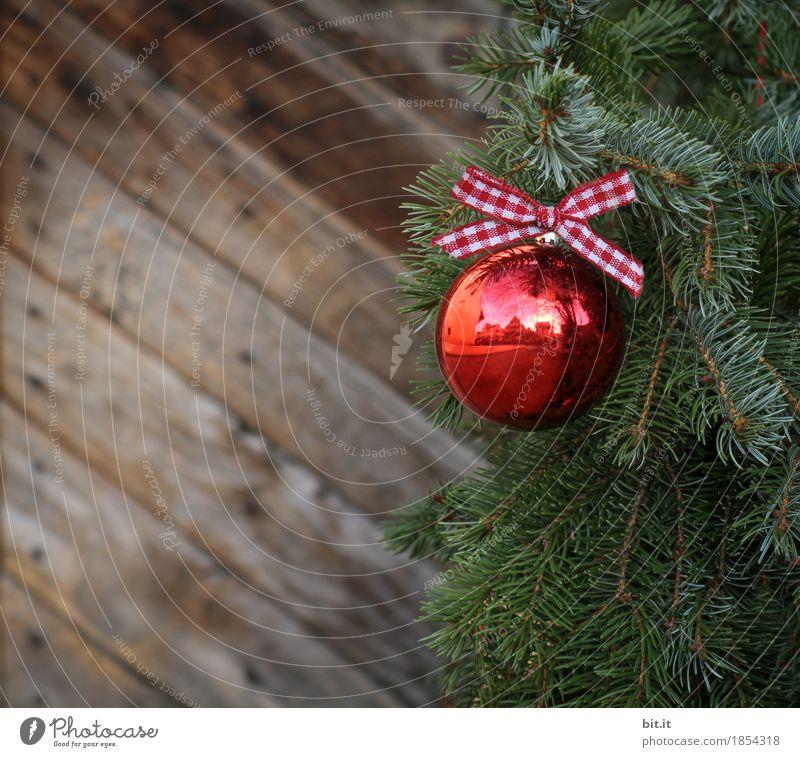 Weihnachtszweig Feste & Feiern Weihnachten & Advent Dekoration & Verzierung Schleife glänzend grün rot Holz Holzwand Zweige u. Äste Kugel Christbaumkugel
