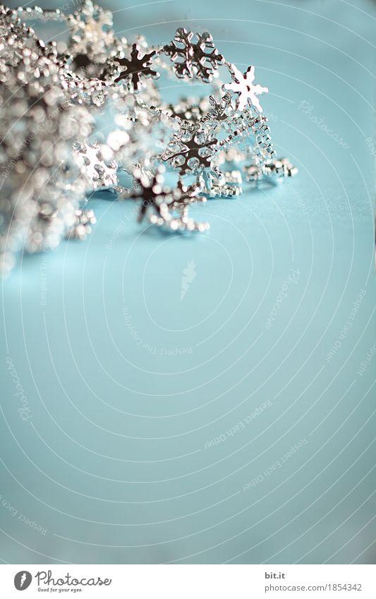 Glitzersternchen blau Weihnachten & Advent weiß Freude Winter kalt Innenarchitektur Glück Feste & Feiern Häusliches Leben glänzend Eis Dekoration & Verzierung