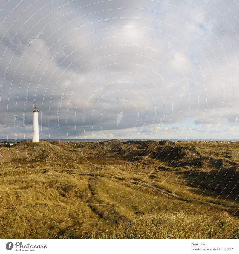 einsamer Riese Umwelt Natur Landschaft Himmel Ferien & Urlaub & Reisen Düne Leuchtturm Gras Küste Dänemark Skandinavien Turm Farbfoto Außenaufnahme Menschenleer