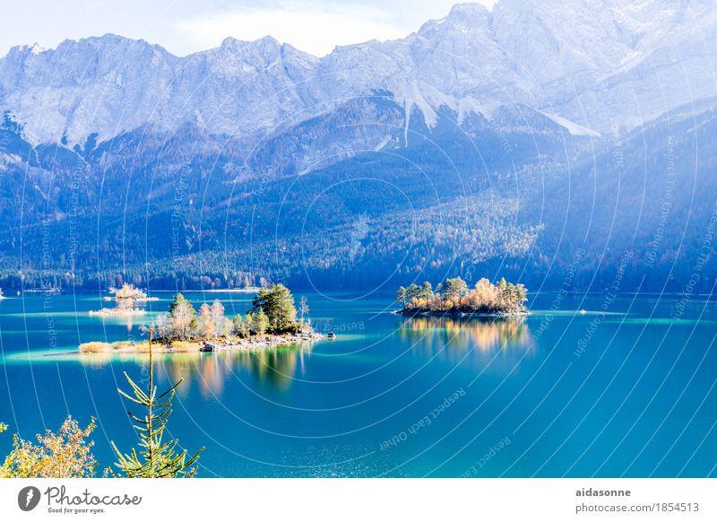 eibsee Natur Pflanze schön Wasser Landschaft ruhig Wald Berge u. Gebirge See Felsen Schönes Wetter Romantik Alpen Gelassenheit achtsam Zugspitze