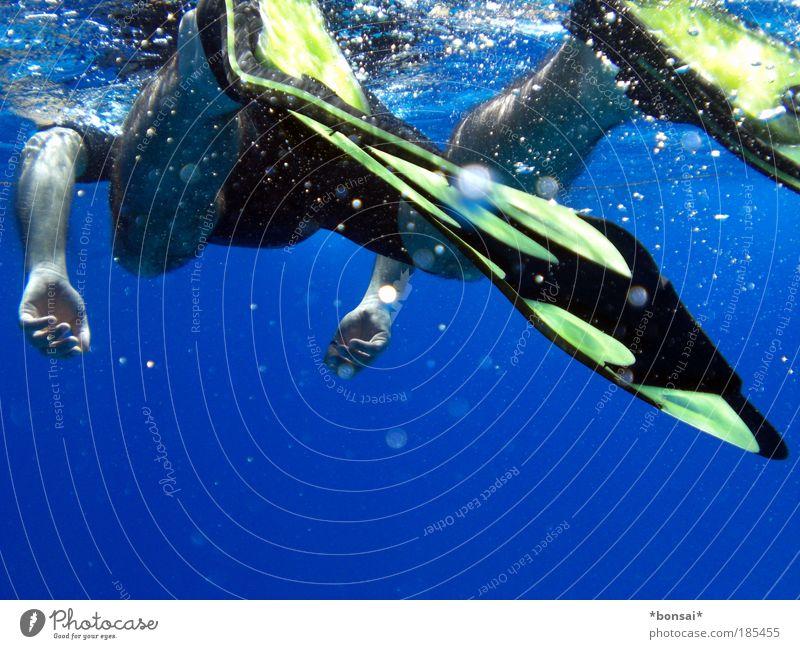 der gemeine gelbflossen-schnorchler Mensch Mann blau Wasser Ferien & Urlaub & Reisen Hand Sonne Meer Erwachsene Beine Fuß Schwimmen & Baden Wellen Arme Haut