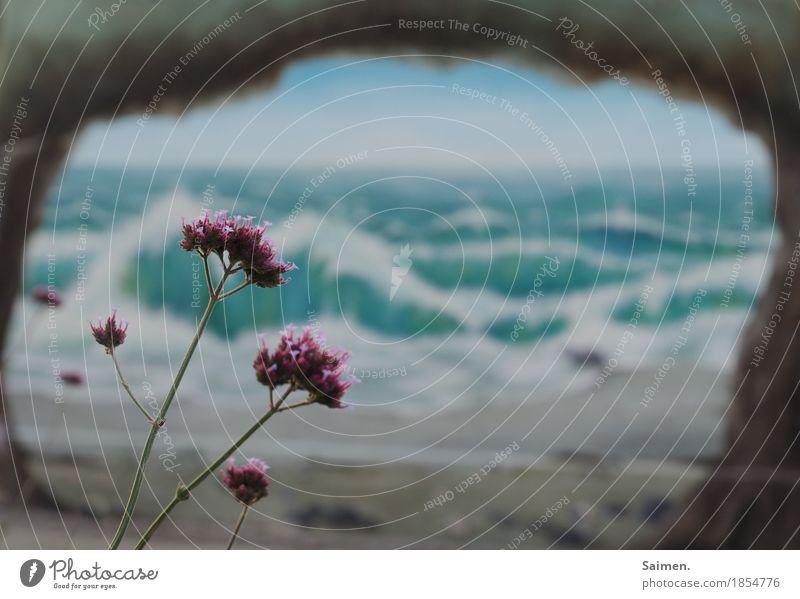 natürlich kunst Pflanze Blume Wellen Mauer Wand Fassade Stimmung Graffiti gemalt Kunst Meer mehrfarbig Stadt Farbfoto Außenaufnahme Menschenleer Tag