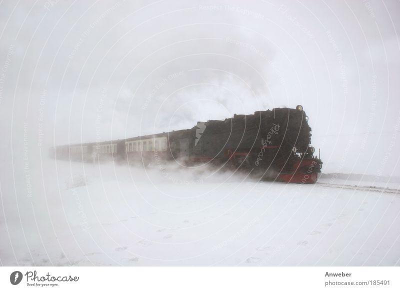 Oben weiß - unten weiß - in der Mitte Brockenbahn Natur Winter Ferien & Urlaub & Reisen Wolken Schnee Lokomotive Gefühle Berge u. Gebirge Freiheit träumen Schneefall Traurigkeit Landschaft Stimmung Nebel Umwelt