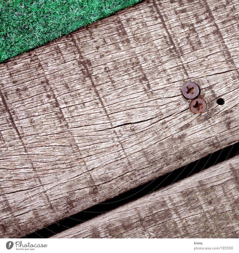 Dieter's Bohlen - versprechen was sie halten Leben Zufriedenheit ruhig Baum Balkon Holz grün Brettwurzelbaum Holzbrett Maserung parallel entgegengesetzt Schlitz