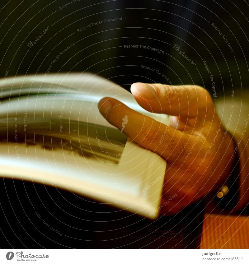 Stöbern lesen Bildung Mann Erwachsene Hand Finger Printmedien Buch Blick Stimmung Kultur Kunst Papier blättern Buchseite Fotografie Bildband Farbfoto