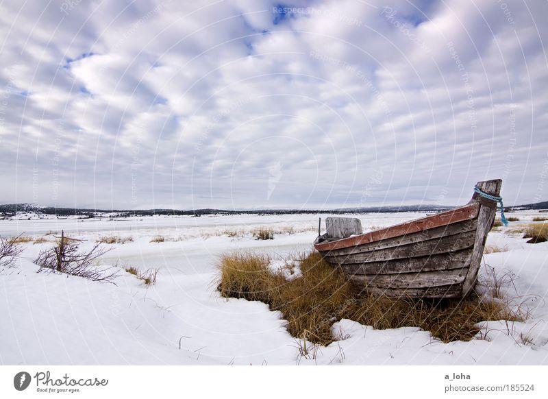 tiefschlaf 2.0 Natur Himmel Winter Wolken Einsamkeit Ferne kalt Schnee Wasserfahrzeug Holz See Landschaft Eis Linie nass