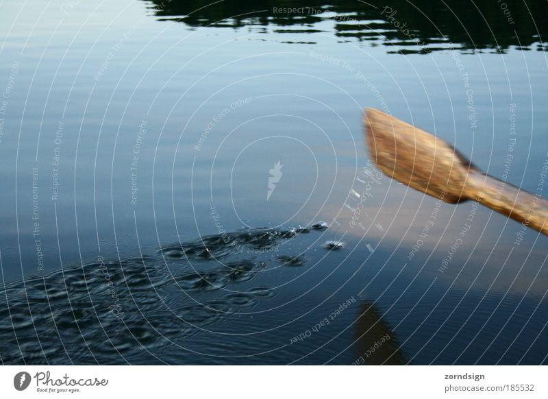 Paddel Natur Wasser Sonnenlicht Herbst Schönes Wetter Bucht Meer See Bootsfahrt Ruderboot Bewegung Denken fahren Flüssigkeit blau braun Rudern Finnland Farbfoto