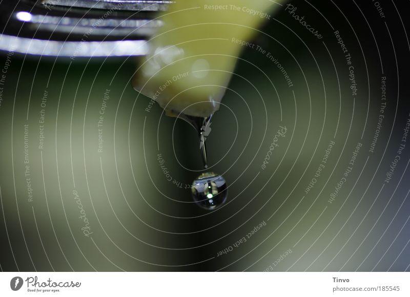 AnnaNass nass Getränk Tropfen Makroaufnahme Südfrüchte Flüssigkeit Alkohol feucht Cocktail durchsichtig exotisch Leichtigkeit Sekt Gabel verführerisch Miniatur