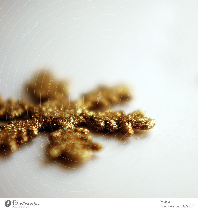 Weihnachtssternlein Weihnachten & Advent schön Feste & Feiern Stern glänzend Detailaufnahme Gold gold Schnee Stern (Symbol) ästhetisch Schmuck Dekoration & Verzierung Kristallstrukturen Basteln