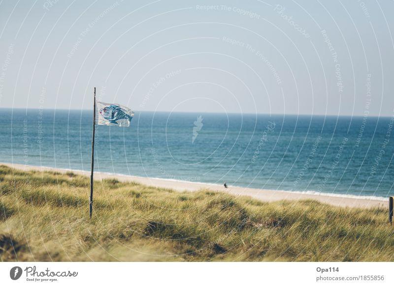 Unendlichkeit Umwelt Natur Landschaft Pflanze Tier Sommer Klima Wetter Schönes Wetter Grünpflanze Wellen Küste Seeufer Strand Bucht Nordsee blau gelb grün