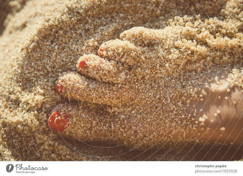 Paniert Zufriedenheit Erholung Ferien & Urlaub & Reisen Tourismus Sommer Sommerurlaub Sonne Sonnenbad Strand Meer Junge Frau Jugendliche Erwachsene Haut Fuß