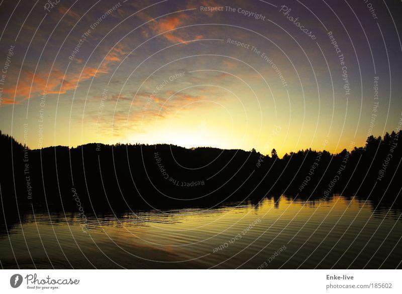 sunset skogtun Natur Wasser Baum Ferien & Urlaub & Reisen Wolken Erholung Freiheit Stil Luft Stimmung Zufriedenheit Freizeit & Hobby Klima authentisch Kreativität fantastisch