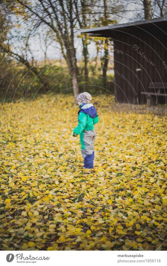junge im herbstlaub Mensch Kind Ferien & Urlaub & Reisen gelb Lifestyle Junge Familie & Verwandtschaft Spielen Garten gehen Freizeit & Hobby wandern Körper