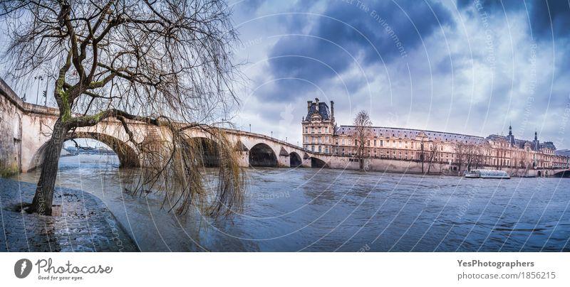 Willow am Ufer der Seine und Pont Royal Wolken Wetter Regen Baum Flussufer Stadt Hauptstadt überbevölkert Palast Brücke Bauwerk Gebäude Architektur alt