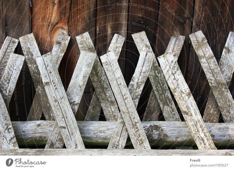 Jägerzaun abgestellt alt Herbst Garten Holz grau Gelassenheit trocken Ruhestand Dürre Gartenarbeit