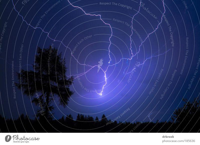 Gewitter Umwelt Natur Landschaft Urelemente Feuer Himmel Wolken Gewitterwolken Nachthimmel Wetter schlechtes Wetter Unwetter Sturm Blitze Baum Wald Dorf