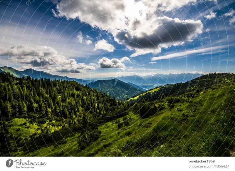 Bergstimmung Landschaft Wolken Sommer Schönes Wetter Alpen Berge u. Gebirge atmen beobachten genießen Blick wandern frei Gesundheit Unendlichkeit Glück schön