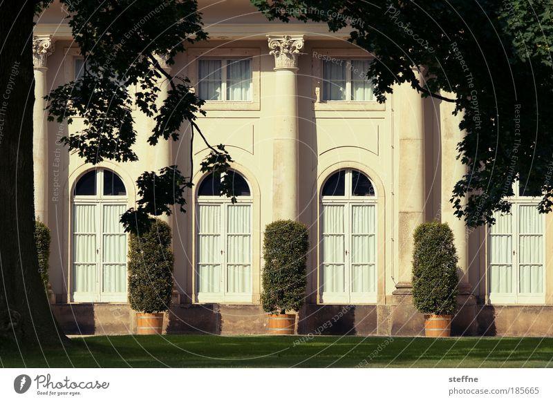 Villa Kunterbunt Baum Garten Park Wiese Traumhaus Architektur Burg oder Schloss Landhaus Reichtum ruhig Farbfoto Außenaufnahme Menschenleer Tag Schatten