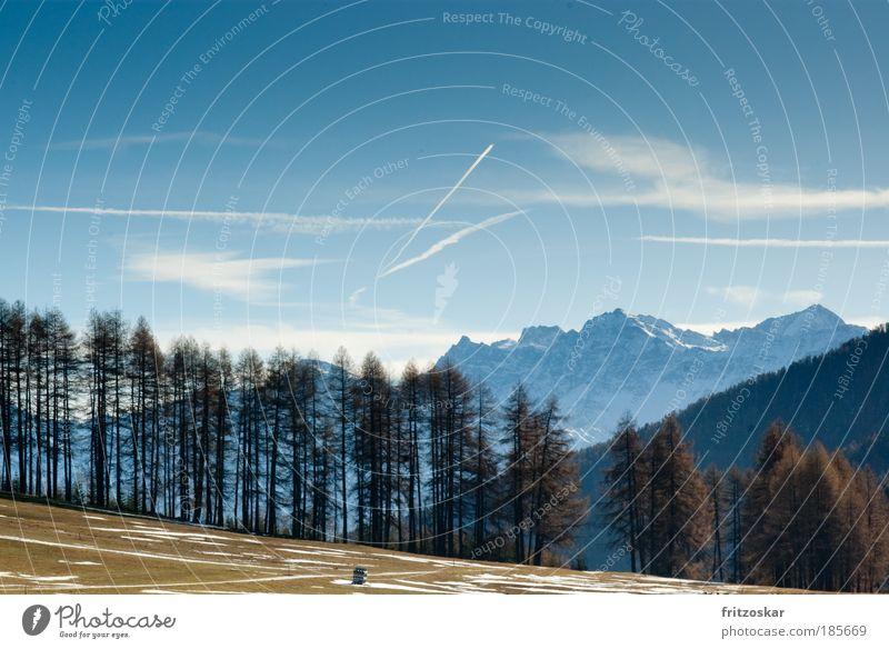 wiese/baum /berg Himmel blau Baum Wolken Ferne Berge u. Gebirge Herbst Schnee Freiheit braun Alpen Südtirol Italien Ortler
