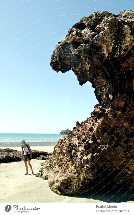 Schafskopf Mensch Frau Natur Meer Erwachsene Landschaft Sand Küste Angst Felsen groß Gebiss gruselig Fressen Australien Wolkenloser Himmel