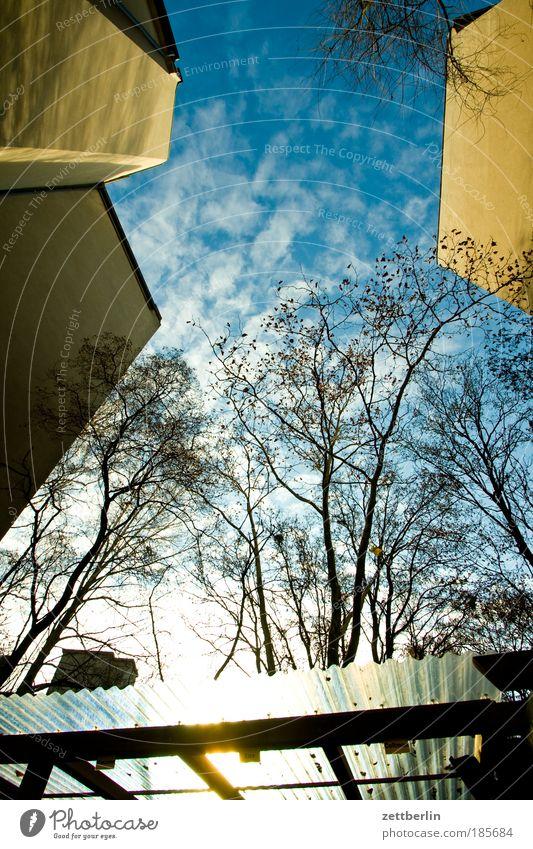 Strapaziös langweilig Himmel Baum Sonne Haus Wolken Herbst Mauer Gebäude hell Ast Jahreszeiten Zweig Hinterhof blenden Mieter Nachbar