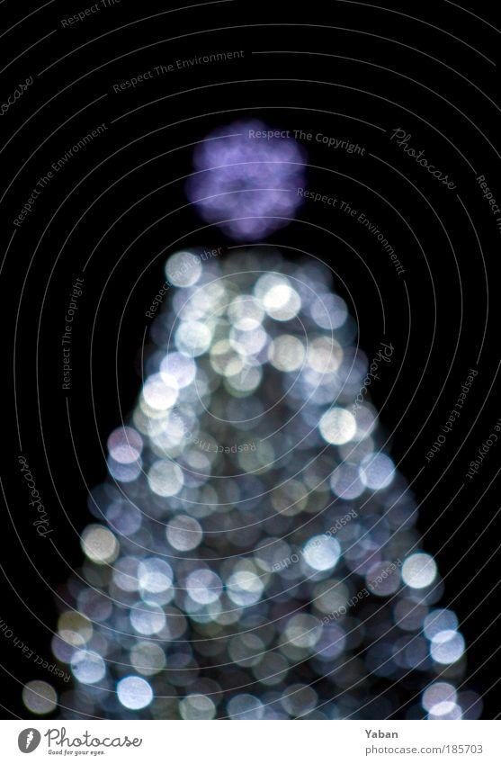 Weihnachtsbaum - Under the Xmas tree Weihnachten & Advent weiß Baum schwarz Feste & Feiern glänzend Kerze Weihnachtsbaum violett Dekoration & Verzierung Show Zeichen leuchten Muster silber