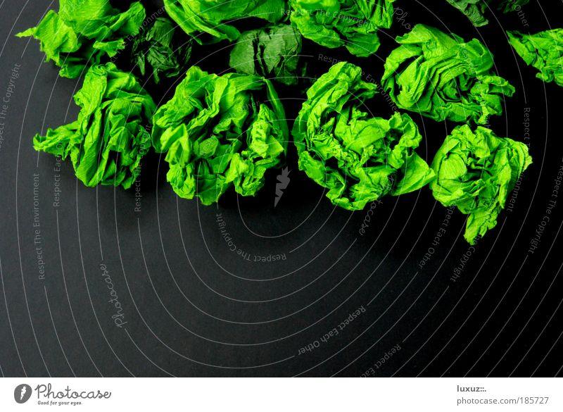 ach du grüne neune Natur Pflanze Umwelt Ernährung Lebensmittel Gesundheit Klima planen Kochen & Garen & Backen Kreativität Idee Gemüse chaotisch Bioprodukte