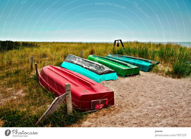 Auswahl für den roten Korsar Himmel Natur Wasser alt grün blau Pflanze rot Sommer Strand Ferien & Urlaub & Reisen Meer ruhig Landschaft Sand Luft
