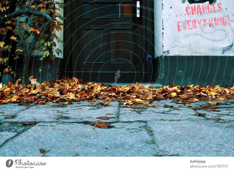 klimawandel Natur Baum Blatt Herbst Wand Umwelt Graffiti Mauer Tür Klima Politische Bewegungen Schriftzeichen Wandel & Veränderung Häusliches Leben Jahreszeiten Griff