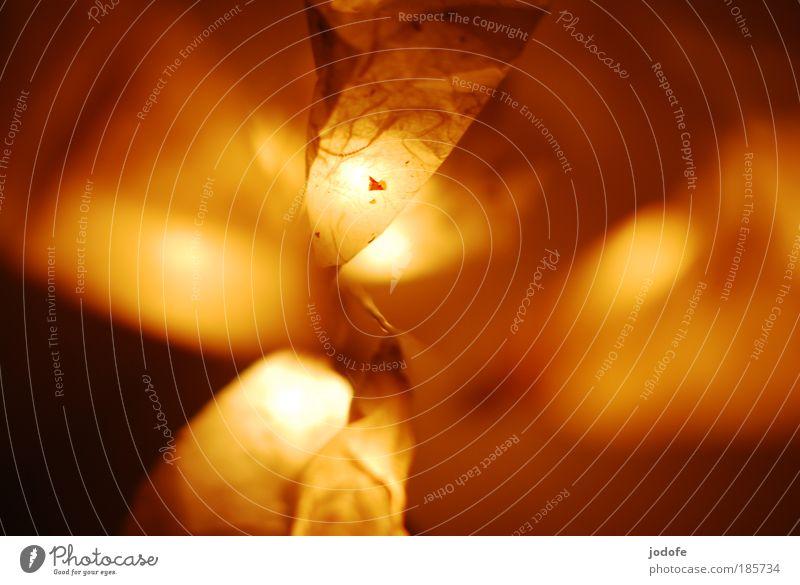 Lichterkette II Weihnachten & Advent Stil Wärme hell Design Papier Sicherheit Kitsch Dekoration & Verzierung Vertrauen gemütlich Geborgenheit Krimskrams