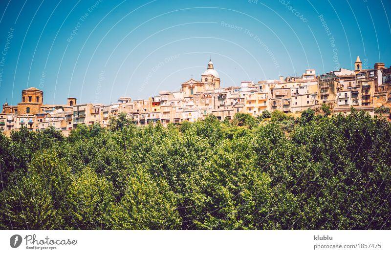 Panoramablick in Piazza Armerina, Sizilien, Italien Ferien & Urlaub & Reisen alt Pflanze Stadt Baum Landschaft Haus Straße Architektur Religion & Glaube Gebäude
