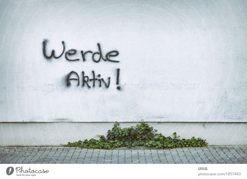 Werde Aktiv Efeu Mauer Wand Graffiti weiß selbstbewußt Tatkraft Verantwortung fleißig Entschlossenheit Stadt Aufruf Copyspace Farbe Hintergrundbild Narrenhände